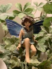 1975_fairy0.JPG
